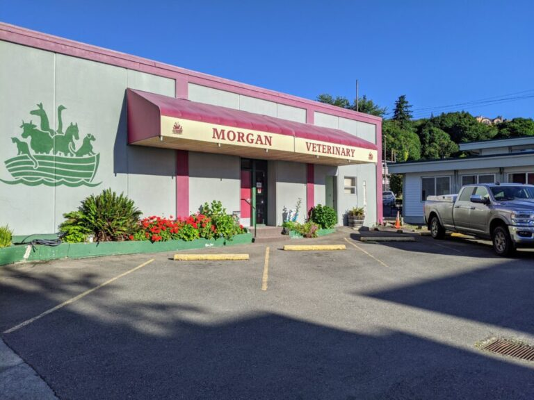 We are located on the corner of Market Ave. and 2nd Street, in Downtown Coos Bay